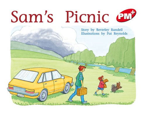 sams-picnic-pm-plus-level-5-red-progress-with-meaning
