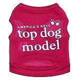 bismarckbeer Hunde-T-Shirt für kleine Hunde, Frühling und Sommer