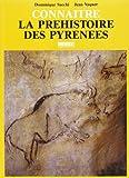 Connaître la préhistoire des Pyrénées