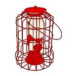 Vivo © NEW MODEL Hanging feeder Squirrel Proof Guard Bird Fat Ball Seed Nut feeding GardenTray[Red (Seed)] 2