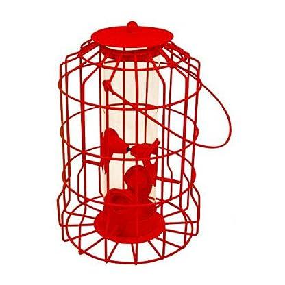 Vivo © NEW MODEL Hanging feeder Squirrel Proof Guard Bird Fat Ball Seed Nut feeding GardenTray[Red (Seed)] 1