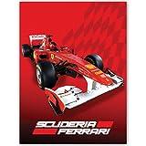 Best Ferrari Mantas - Ferrari Manta de Forro Polar F1 Race diseño Review