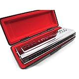 Vingt-quatre trous harmonica, trou 24, C, G, tune tune double face, double hauteur, jouer de l'harmonica,24 trous, C tune, modulation G