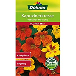 """Dehner Blumen-Saatgut, Kapuzinerkresse """"Rankende Mischung"""", 5er Pack (5 x 6 g)"""