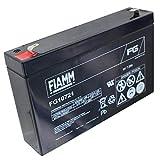 FIAMM FG10721 Bleiakku Akku 6V, 7200mAh/43Wh, Lead-Acid, Schwarz, Neu, Bulk