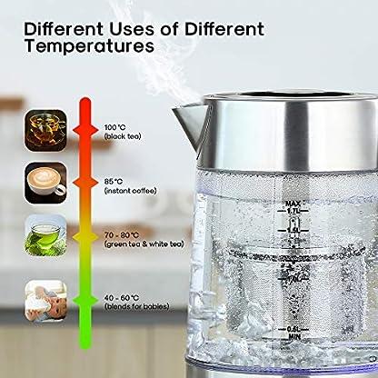 Wasserkocher-2200W-17L-Edelstahl-Glaswasserkocher-Gblife-Temperatureinstellung-von-40-bis-100C-LED-Anzeige-Elektrischer-Wasserkocher-Trockenlaufschutz-BPA-Frei-Warmhaltefunktion-mit-zwei-Deckel
