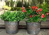 Picture Of Flower Pots Indoor 23 cm Metal Plant Pots, Garden Planters Set of 2, Quality Garden Pots for Garden Lovers