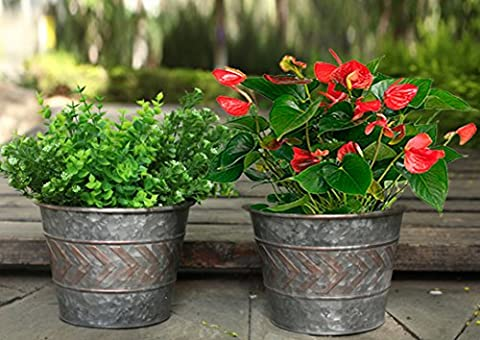 Garden Planters Flower Pot Indoor, Flower Planters Gardening Pots Plant Containers, Old Silver Tin 9 inch Set 2, Limited Offer for New Release Products