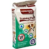 20 Pack Training Pads for Puppies