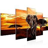 Bilder Afrika Elefant Wandbild 150 x 75 cm Vlies - Leinwand Bild XXL Format Wandbilder Wohnzimmer Wohnung Deko Kunstdrucke Orang 5 Teilig - MADE IN GERMANY - Fertig zum Aufhängen 001253a