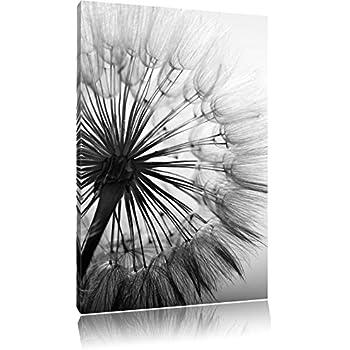 Schöne Pusteblume Schwarz/Weiß, Format: 80x60 auf Leinwand, XXL ...