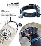 Jack & Russell Premium Hundehalsband Luna reflektierend und Neopren gepolstert Hunde Halsband div. Größen und Farben (Halsumfang M (35-43 cm), Blau)