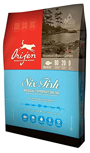 Orijen 6 Fish Dog Food, 340 g