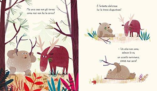 scaricare ebook gratis Un orso è un orso (tranne quando non lo sa) PDF Epub
