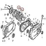 Ersatzteil für Ölbadkupplung Benzinmotoren Reibscheibe für 6,5-13 PS