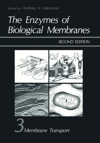 The Enzymes of Biological Membranes: Volume 3: Membrane Transport