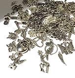 BestMall 100 pcs Mix de broloques plaqué Argent pour Collier, Bracelet, pendentifs Bijoux DIY...