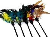 Cdet 5X Las cañas de pescar las campanas molestan al palillo del gato el gato juega los 30.5cm