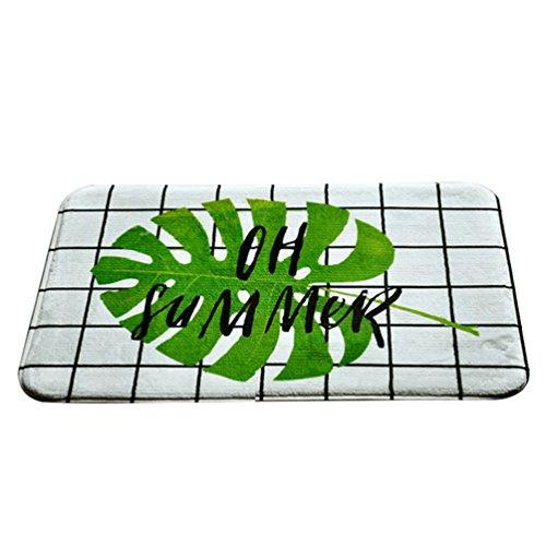 CHENGYANG Fußmatte Fußabtreter Abtreter Schmutzmatte Schmutzfangmatten mit Rutschfest & Waschbar Läufer (Stil#5, 50 * 80cm)