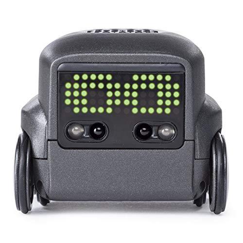 Boxer 6045396 schwarz (Solid), Kleiner Robo, sofort spielbereit, App-Unterstützung, ab 6 Jahren, Sortiert, Multicolour