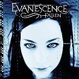 Songtexte von Evanescence - Fallen