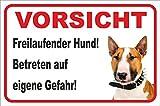 Rainbow-Print Schild - Vorsicht Bullterrier Freilaufender Hund (Braun/Weiß) (20x30cm)