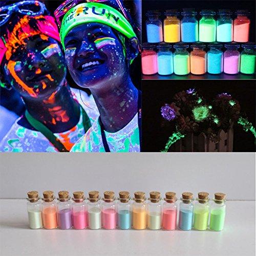 MELARIO 13 Pack 13 Farben 130g Leuchtfarbe Nachleuchtpigment Pigment Nachtleuchtfarbe Pulver 10g/pc