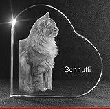 VIP-LASER 2D GRAVUR Glasherz XXL mit Deinem Katzenfoto Katze graviert! Dein Wunschfoto für die Ewigkeit mitten in Glas! Groesse XXL = 105x105x19mm