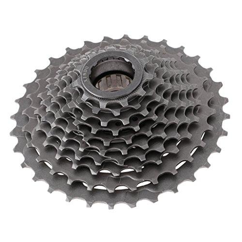 Sharplace Premium 10 Speed Fahrrad Kette Kassette Schraubkranz mit Freilauf Bike 11-32 Zähne -