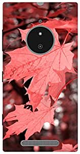 The Racoon Lean Autumn Fall Corel hard plastic printed back case / cover for Nokia Lumia 830