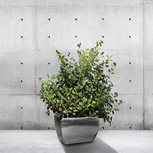 Maceta Rural Hecha a Mano de Aluminio Reciclado para Refugiados, para Interiores, cocinas, hogares, Jardines, Patios, Cactus suculentos, Hierbas o Plantas pequeñas
