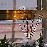 sunnymi Branche de Saule LED Lampe Floral lumières 20Ampoules Lampe de Table Imitation Arbre lanternes Convient pour Une fête de Noël Décor de Jardin 77cm/30Inches Jaune