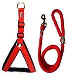 #7: Petshop7 Nylon Padded Red adjustable Dog Harness & Leash Rope 1.25 Inch for Large Pet (Chest Size : 33-42)