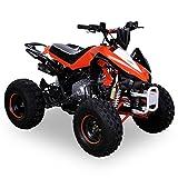 Kinder Quad 125 ccm orange/weiß Panthera - 5