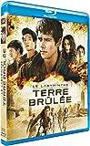 Le Labyrinthe : La Terre Brûlée [Blu-ray + Digital HD] [Import italien]