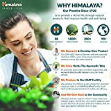 Himalaya Ayurvedic Dental Cream, 1er Pack (1 x 100 g) - 7