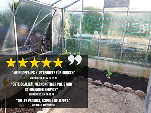 GardenGloss Ranknetz mit Großer Maschenweite - 7