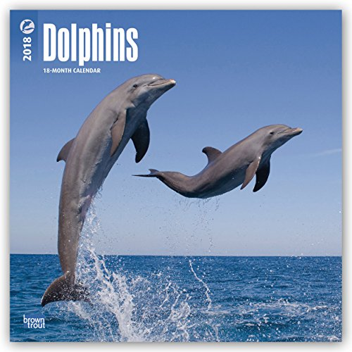 Descargar Libro Dolphins - Delfine 2018 - 18-Monatskalender: Original BrownTrout-Kalender de Browntrout