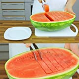 #9: Grizzly Stainless Steel Watermelon Fruit Dig Corer Cutter & Server, watermelon fruit slicer