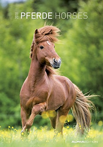 Pferde 2018