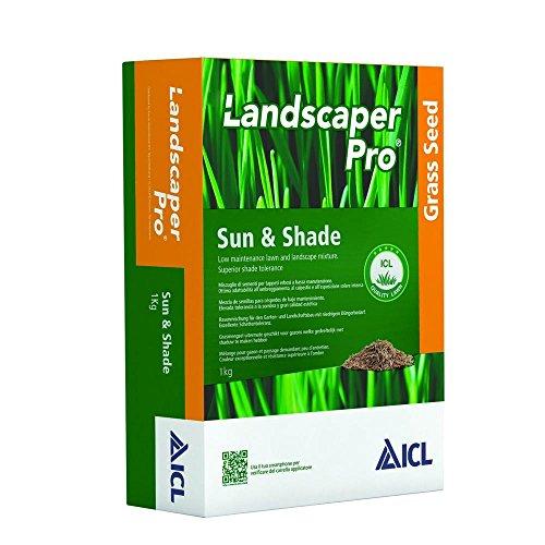 ICL Prato Sun & Shade KG. 1 Samen von Rasen (Pro Landscaper)