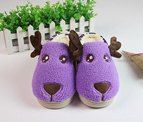DMMSS Lovers Automne Et D'Hiver Coton Pantoufles Belles Pantoufles De Laine Intérieure Non - Glissement Des Chaussures Souples Purple