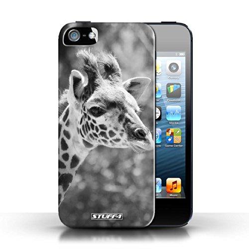 Hülle Case für Apple iPhone 5/5S / Faultier Entwurf / Zoo-Tiere Collection Giraffe