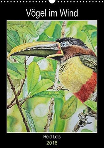 Condor Vogel (Vögel im Wind (Wandkalender 2018 DIN A3 hoch): Vögel die in Argentinien leben und auf Aquarell verewigt bleiben. (Planer, 14 Seiten ) (CALVENDO Tiere))