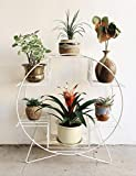 #7: Nayab Handicrafts Ivory Iron Hoop Round Pot And Planter Stand