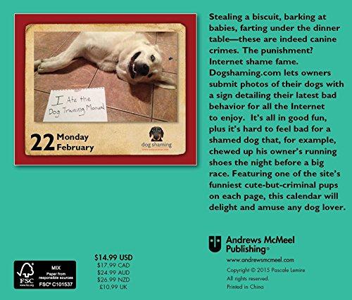 Dog Shaming 2016 Daytoday Calendar