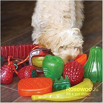 Rosewood Apple BioSafe Dog Toy 4