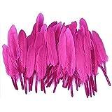 Milopon 100x Feder Gänse Federn Natürliche Gans Feder Gefieder Zierfedern Wohnkultur Partei DIY Ornamente Bastelbedarf (Rose)