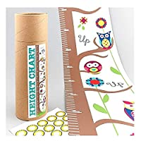 F/ROCK HEIGHT CHART OWL WITH STICKERS