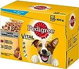 Pedigree Hundefutter Nassfutter Adult in Pastete, Auswahl mit Rind und Huhn, 48 Portionsbeutel (4 x 12 x 100g)